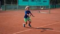 Kinder u Jugendtraining